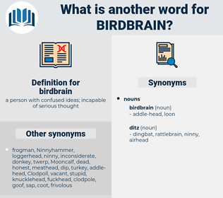 birdbrain, synonym birdbrain, another word for birdbrain, words like birdbrain, thesaurus birdbrain