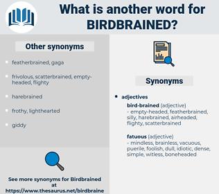 birdbrained, synonym birdbrained, another word for birdbrained, words like birdbrained, thesaurus birdbrained
