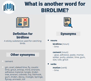 birdlime, synonym birdlime, another word for birdlime, words like birdlime, thesaurus birdlime