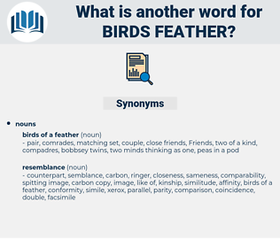 birds feather, synonym birds feather, another word for birds feather, words like birds feather, thesaurus birds feather