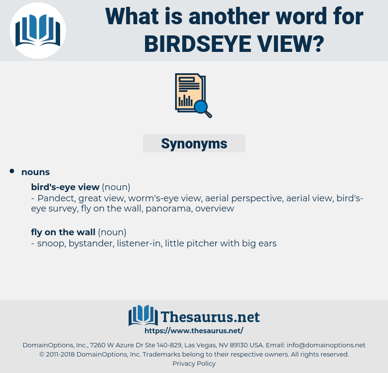 birdseye view, synonym birdseye view, another word for birdseye view, words like birdseye view, thesaurus birdseye view