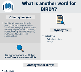 Birdy, synonym Birdy, another word for Birdy, words like Birdy, thesaurus Birdy