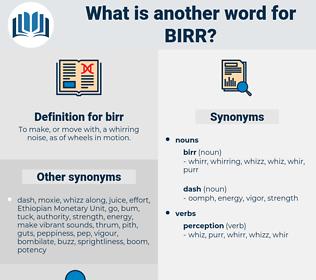 birr, synonym birr, another word for birr, words like birr, thesaurus birr