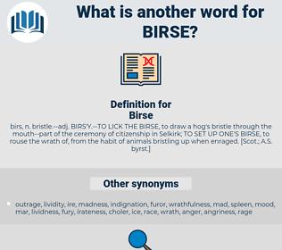 Birse, synonym Birse, another word for Birse, words like Birse, thesaurus Birse