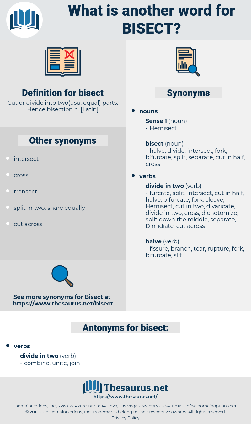 bisect, synonym bisect, another word for bisect, words like bisect, thesaurus bisect