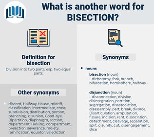 bisection, synonym bisection, another word for bisection, words like bisection, thesaurus bisection