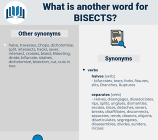 bisects, synonym bisects, another word for bisects, words like bisects, thesaurus bisects