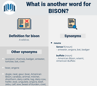 bison, synonym bison, another word for bison, words like bison, thesaurus bison