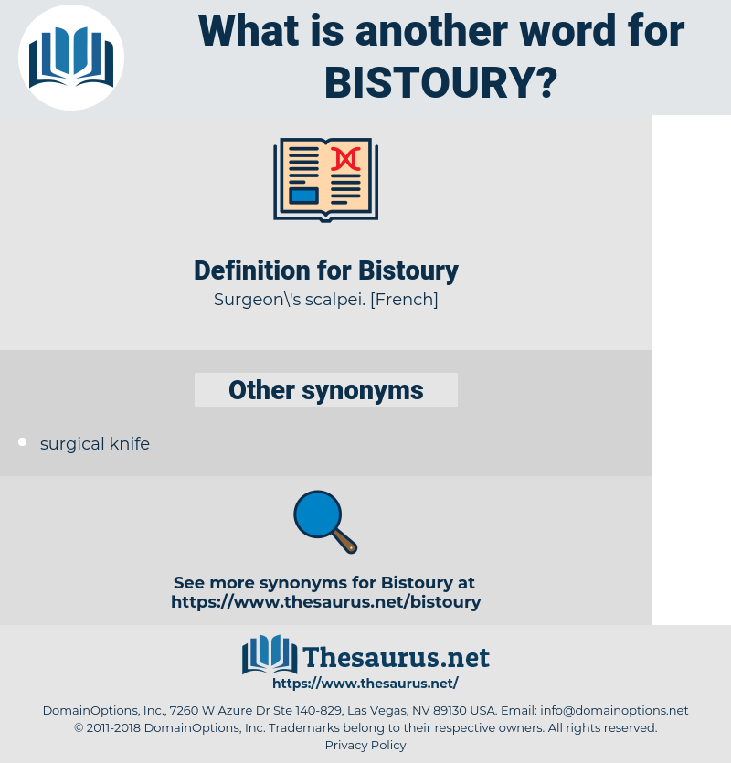 Bistoury, synonym Bistoury, another word for Bistoury, words like Bistoury, thesaurus Bistoury