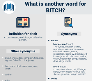 bitch, synonym bitch, another word for bitch, words like bitch, thesaurus bitch
