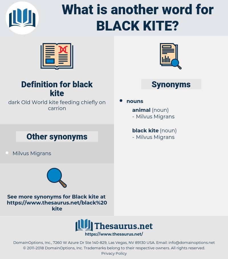 black kite, synonym black kite, another word for black kite, words like black kite, thesaurus black kite
