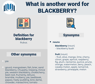 blackberry, synonym blackberry, another word for blackberry, words like blackberry, thesaurus blackberry
