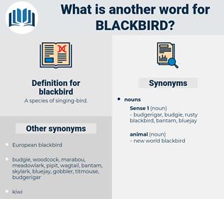 blackbird, synonym blackbird, another word for blackbird, words like blackbird, thesaurus blackbird