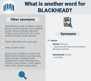 blackhead, synonym blackhead, another word for blackhead, words like blackhead, thesaurus blackhead