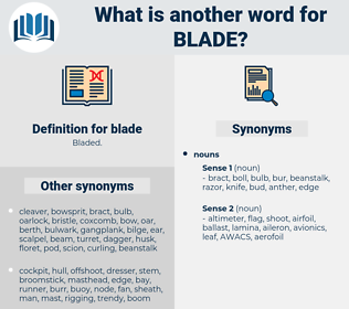 blade, synonym blade, another word for blade, words like blade, thesaurus blade