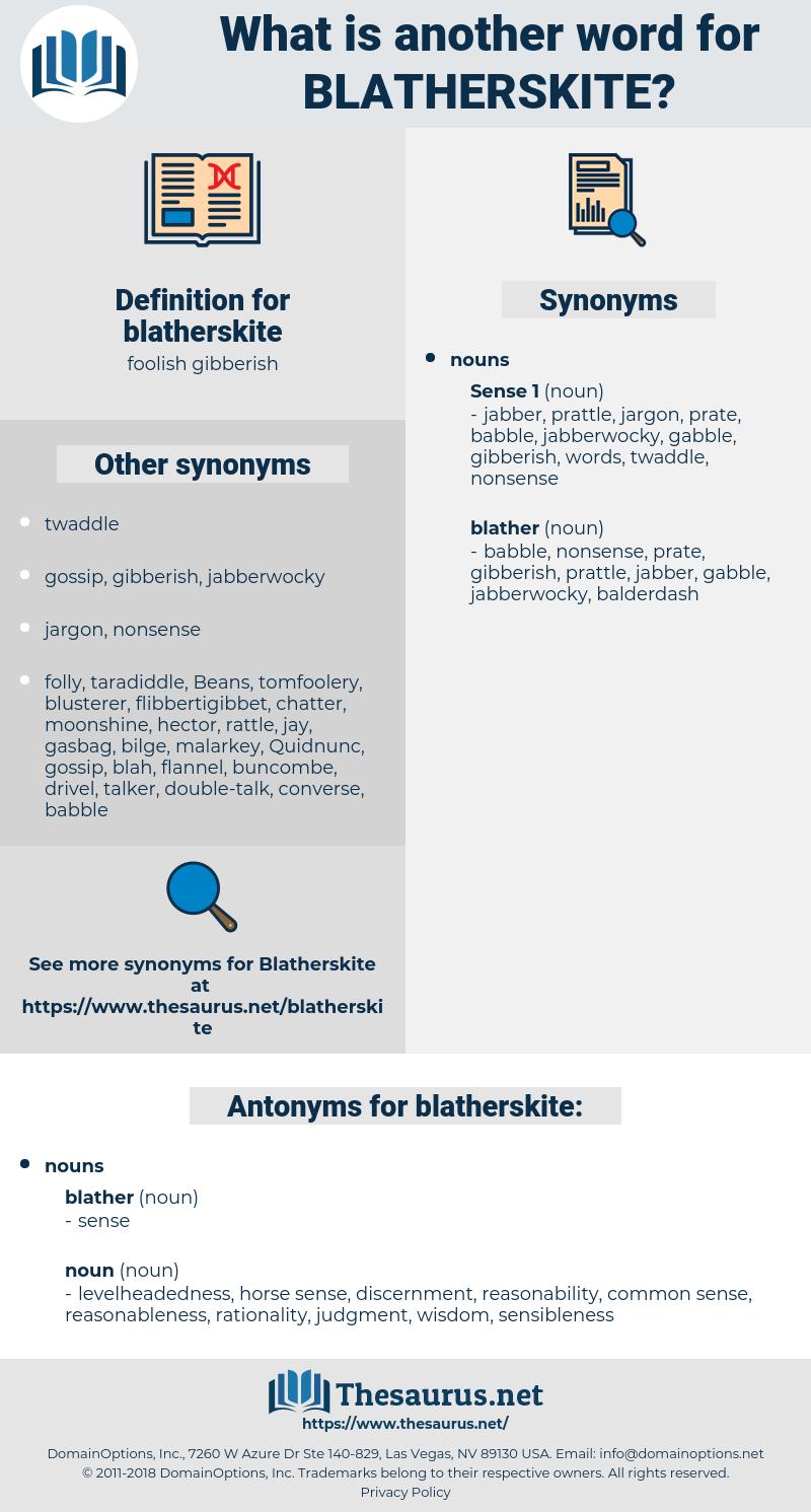 blatherskite, synonym blatherskite, another word for blatherskite, words like blatherskite, thesaurus blatherskite