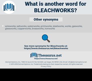 bleachworks, synonym bleachworks, another word for bleachworks, words like bleachworks, thesaurus bleachworks