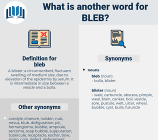 bleb, synonym bleb, another word for bleb, words like bleb, thesaurus bleb