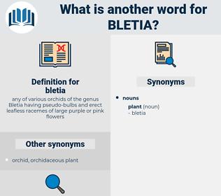 bletia, synonym bletia, another word for bletia, words like bletia, thesaurus bletia