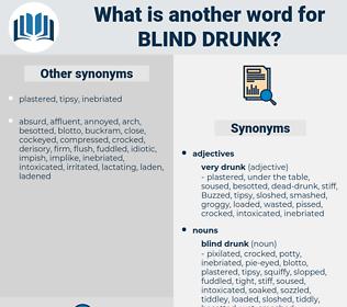 blind drunk, synonym blind drunk, another word for blind drunk, words like blind drunk, thesaurus blind drunk