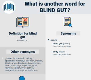 blind gut, synonym blind gut, another word for blind gut, words like blind gut, thesaurus blind gut