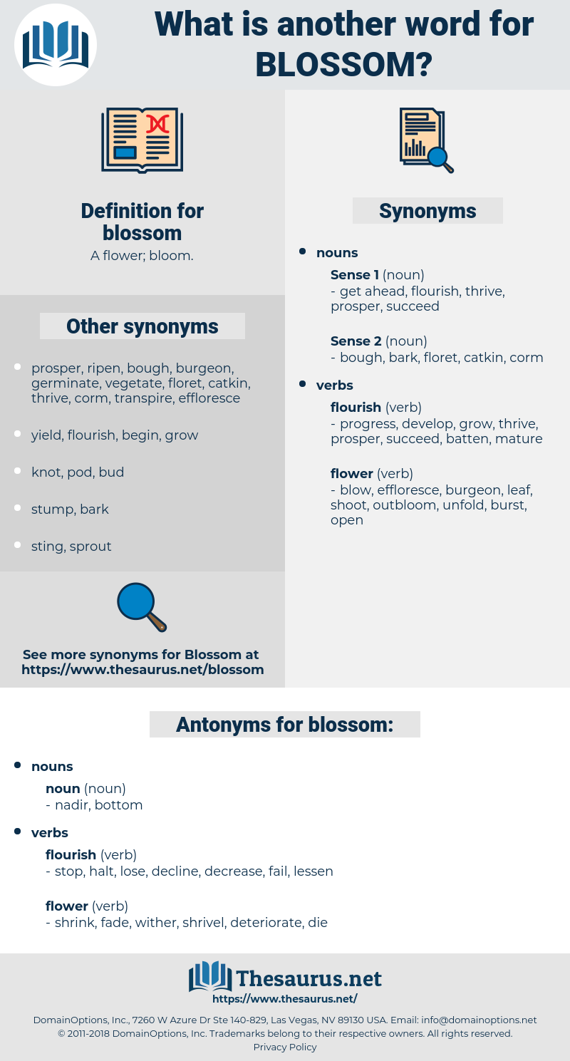 Synonyms For Blossom Antonyms For Blossom Thesaurus Net