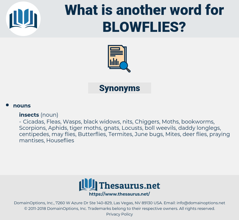 blowflies, synonym blowflies, another word for blowflies, words like blowflies, thesaurus blowflies
