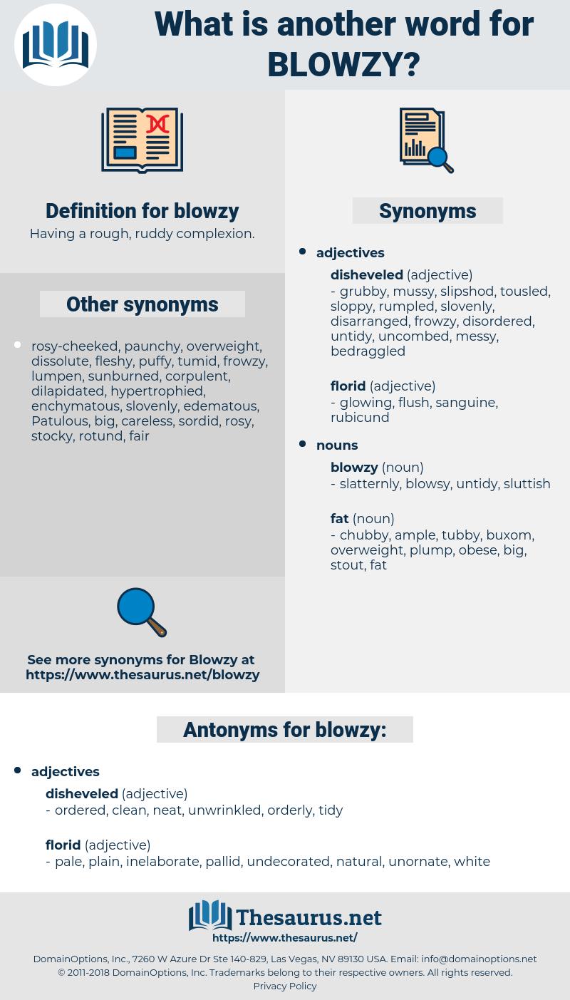 blowzy, synonym blowzy, another word for blowzy, words like blowzy, thesaurus blowzy