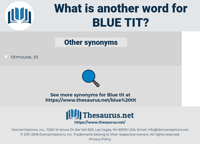 blue tit, synonym blue tit, another word for blue tit, words like blue tit, thesaurus blue tit
