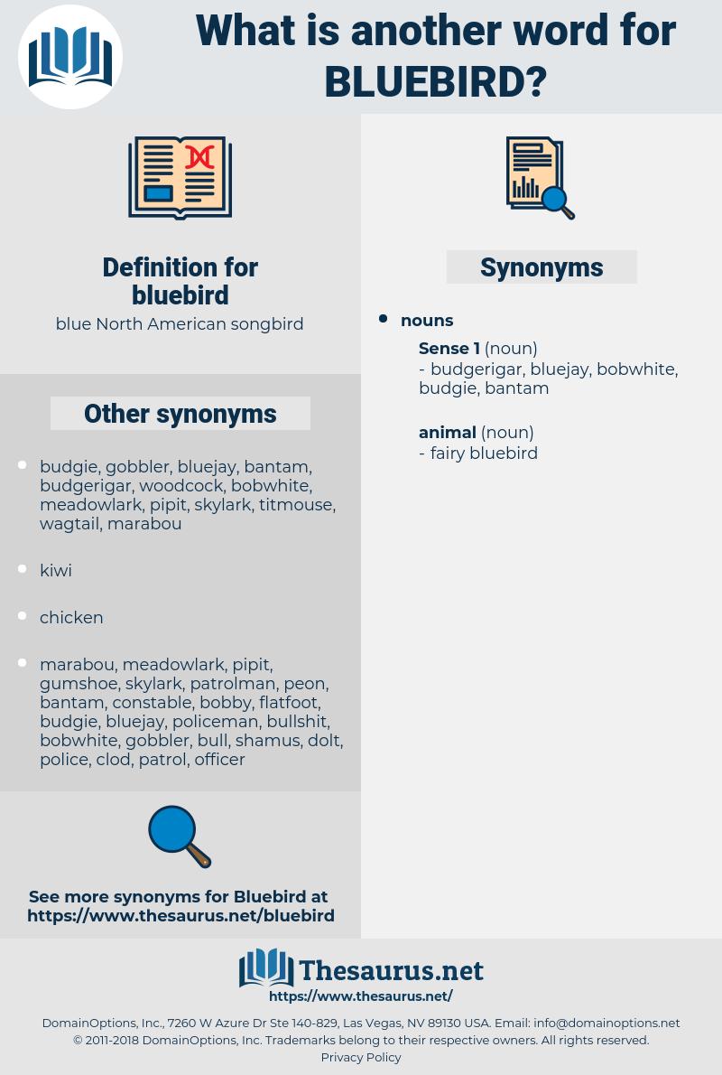bluebird, synonym bluebird, another word for bluebird, words like bluebird, thesaurus bluebird