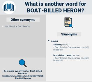 boat-billed heron, synonym boat-billed heron, another word for boat-billed heron, words like boat-billed heron, thesaurus boat-billed heron