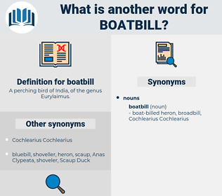 boatbill, synonym boatbill, another word for boatbill, words like boatbill, thesaurus boatbill