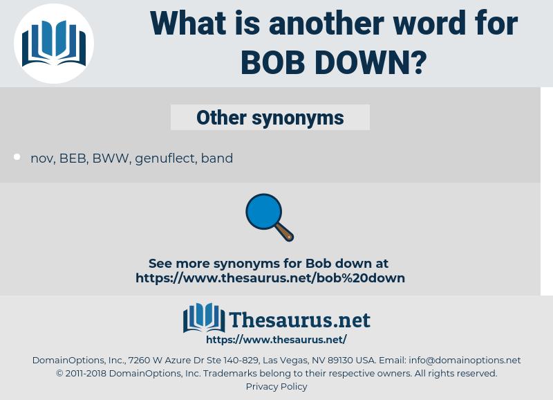 bob down, synonym bob down, another word for bob down, words like bob down, thesaurus bob down
