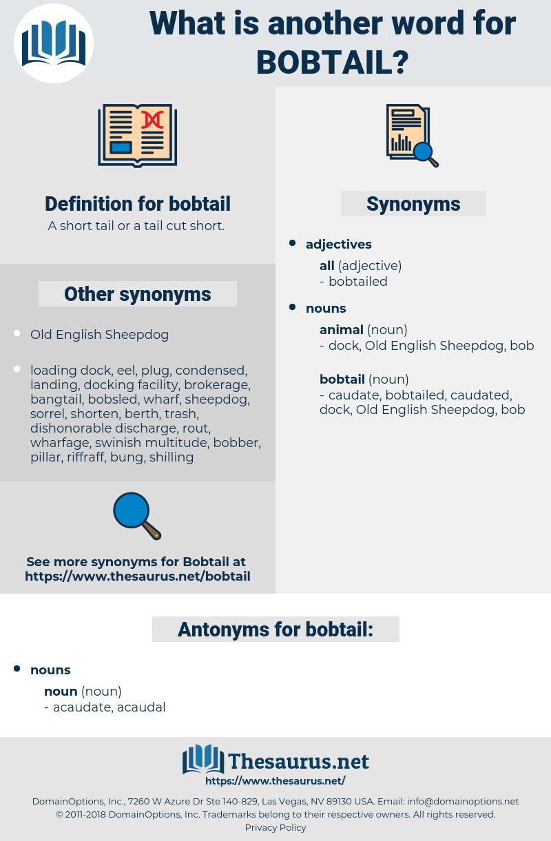 bobtail, synonym bobtail, another word for bobtail, words like bobtail, thesaurus bobtail