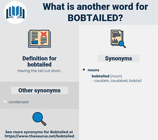 bobtailed, synonym bobtailed, another word for bobtailed, words like bobtailed, thesaurus bobtailed