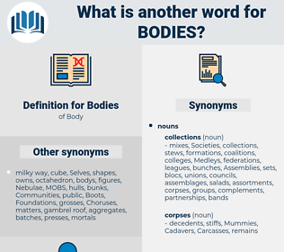 Bodies, synonym Bodies, another word for Bodies, words like Bodies, thesaurus Bodies