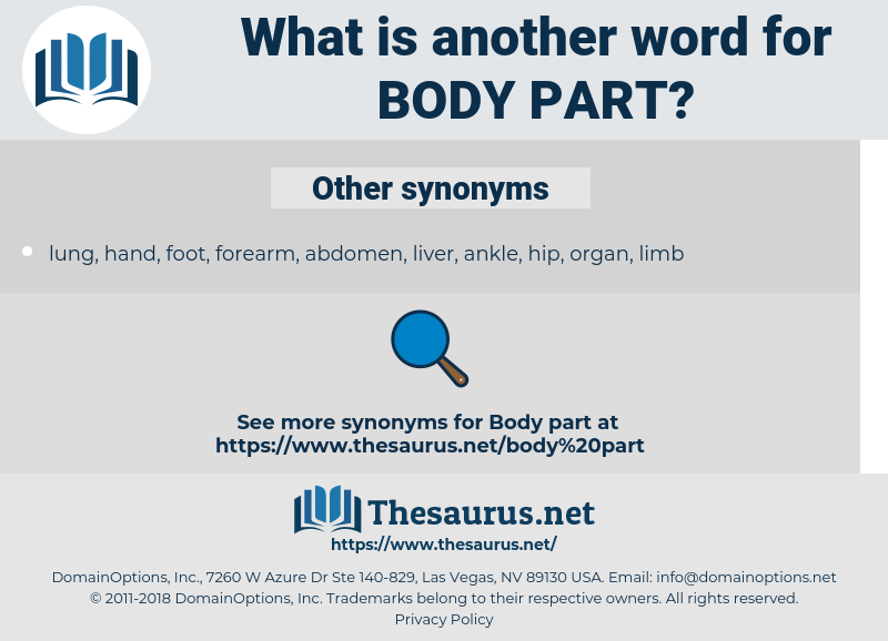 body part, synonym body part, another word for body part, words like body part, thesaurus body part