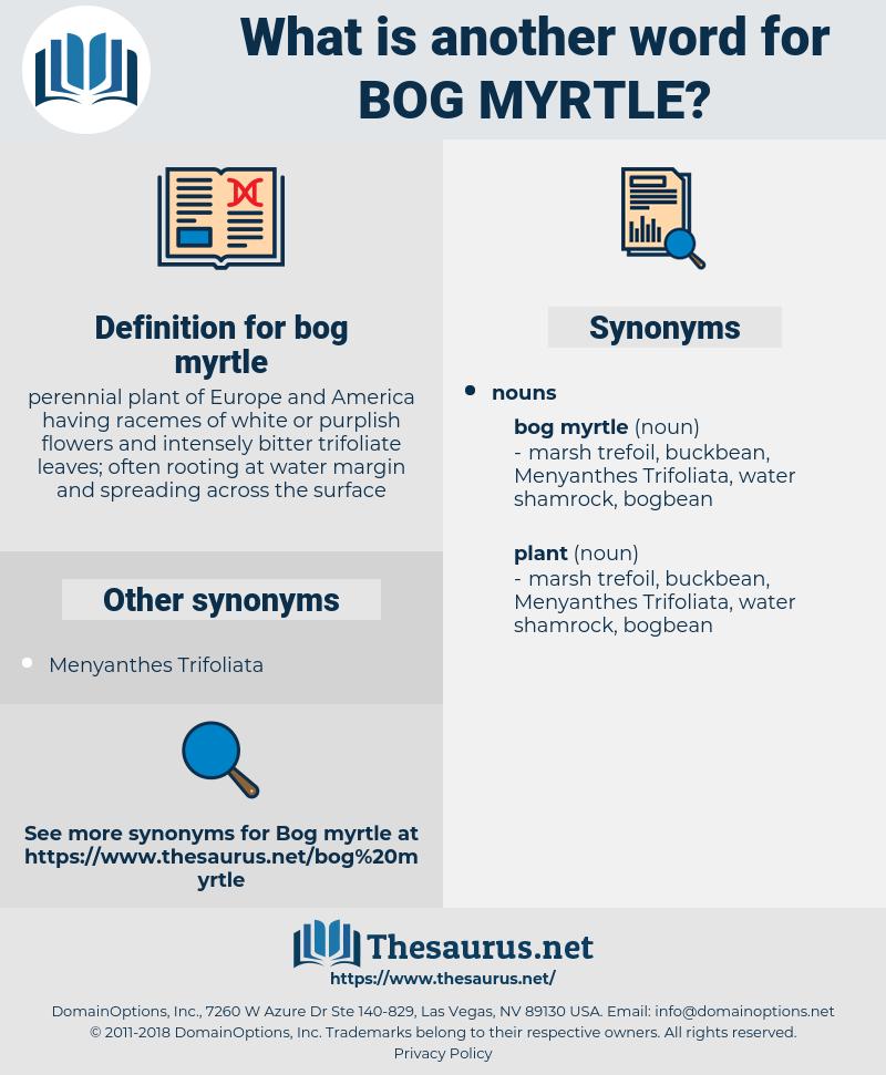 bog myrtle, synonym bog myrtle, another word for bog myrtle, words like bog myrtle, thesaurus bog myrtle