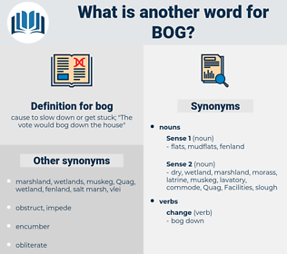 bog, synonym bog, another word for bog, words like bog, thesaurus bog