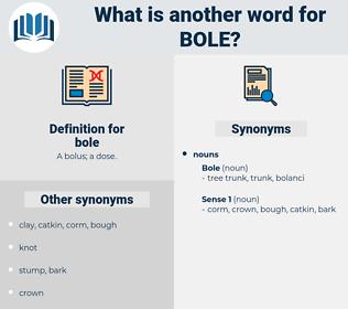 bole, synonym bole, another word for bole, words like bole, thesaurus bole