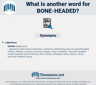 bone-headed, synonym bone-headed, another word for bone-headed, words like bone-headed, thesaurus bone-headed