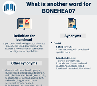 bonehead, synonym bonehead, another word for bonehead, words like bonehead, thesaurus bonehead