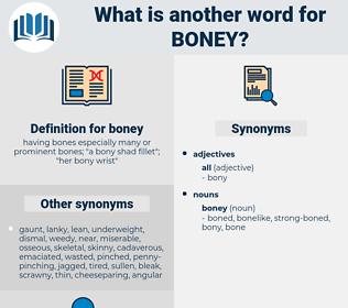 boney, synonym boney, another word for boney, words like boney, thesaurus boney