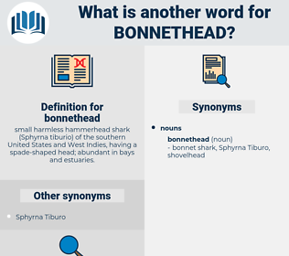 bonnethead, synonym bonnethead, another word for bonnethead, words like bonnethead, thesaurus bonnethead