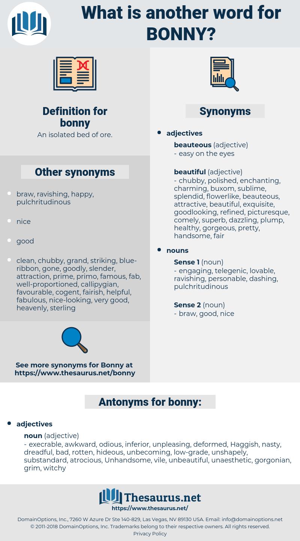bonny, synonym bonny, another word for bonny, words like bonny, thesaurus bonny