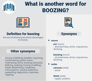 boozing, synonym boozing, another word for boozing, words like boozing, thesaurus boozing