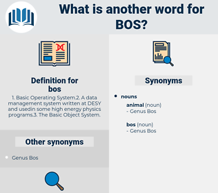 bos, synonym bos, another word for bos, words like bos, thesaurus bos