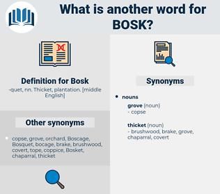 Bosk, synonym Bosk, another word for Bosk, words like Bosk, thesaurus Bosk