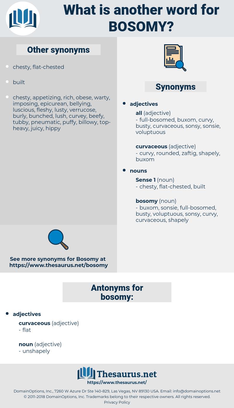 bosomy, synonym bosomy, another word for bosomy, words like bosomy, thesaurus bosomy