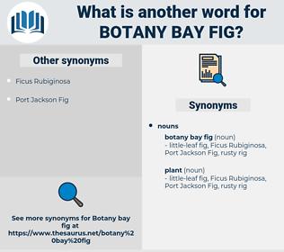 botany bay fig, synonym botany bay fig, another word for botany bay fig, words like botany bay fig, thesaurus botany bay fig